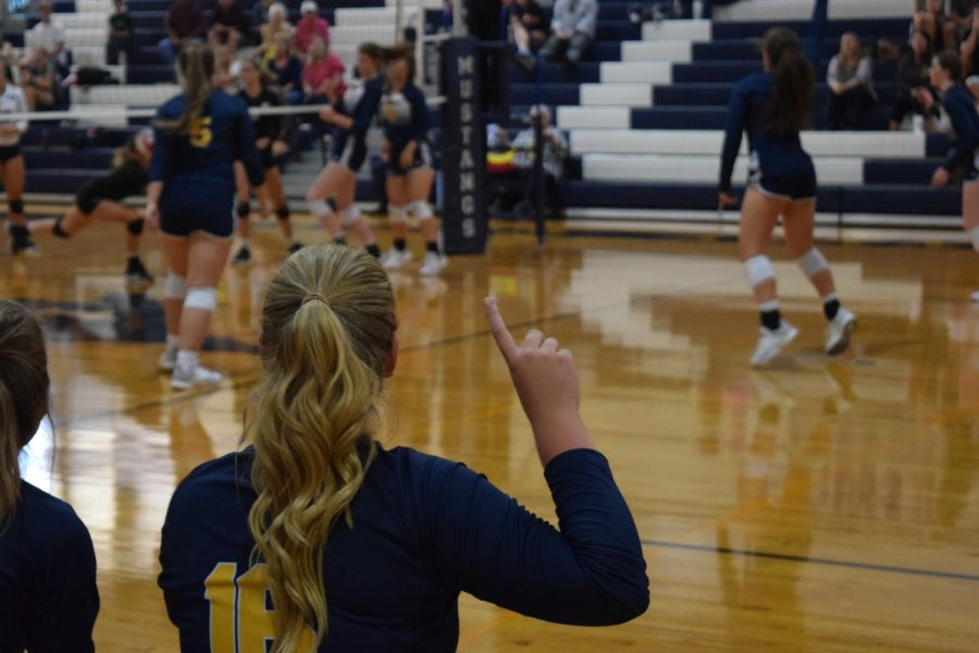 Junior Morgan Oden cheers on her team as they score the final point.