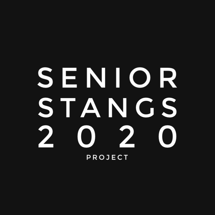 The Senior Stangs Instagram page was founded to create a unique way to recognize students in the class of 2020.