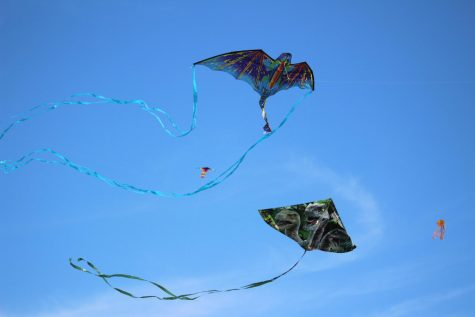 The students got their kites high up in the air.